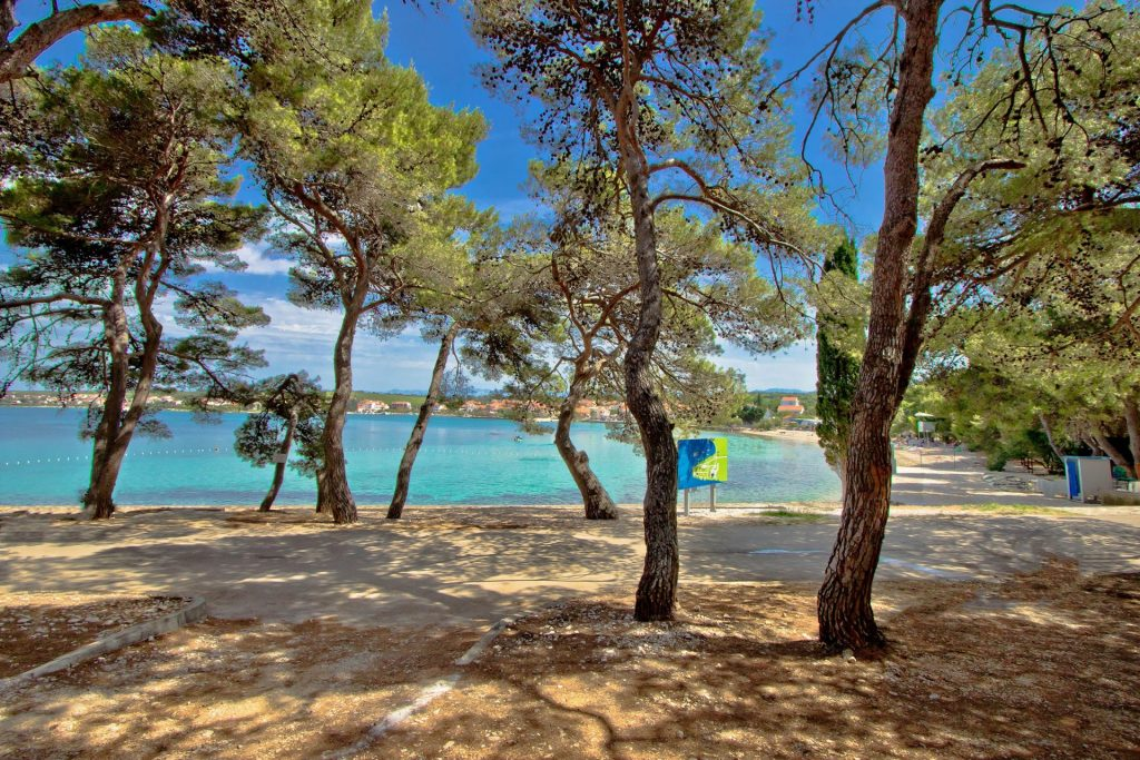 Top Experiences in Petrčane near Zadar